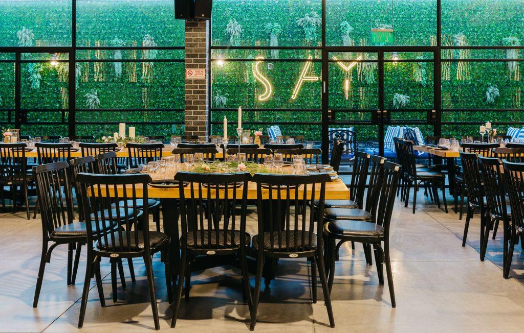 say. צילום: רמי סיני